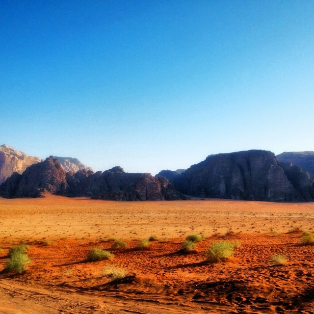 the beauty of wadi rum's desert in the morning.