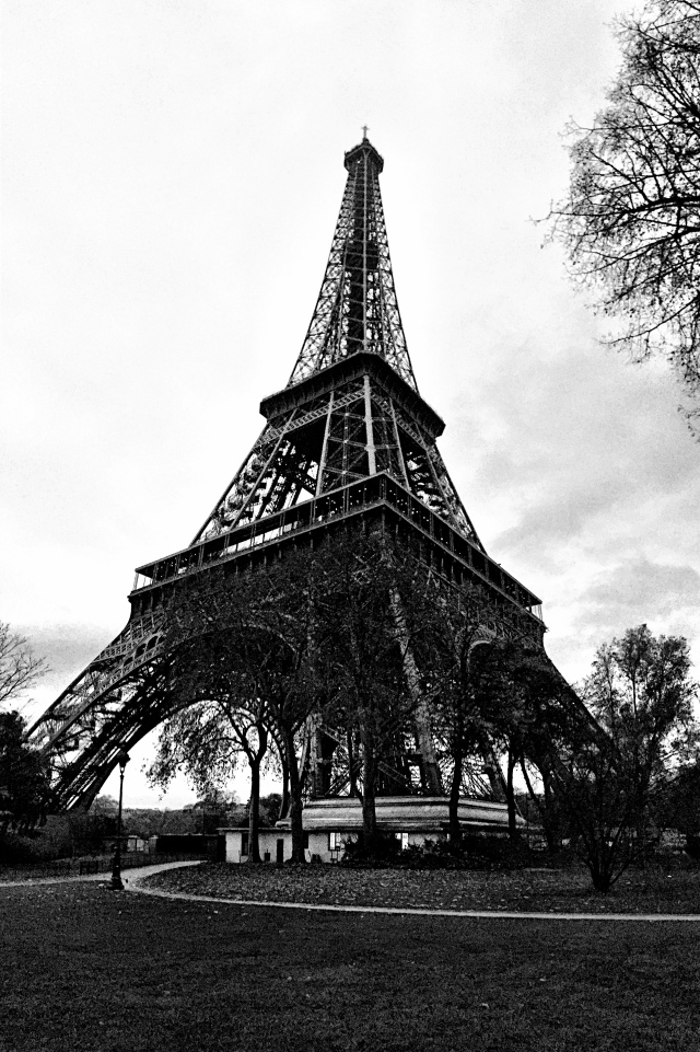 my heart grieves for the people of paris. for the families who lost their loved ones. and for those still in fear of what might come next.